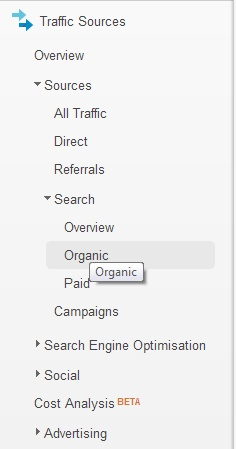 Google Analytics Organic